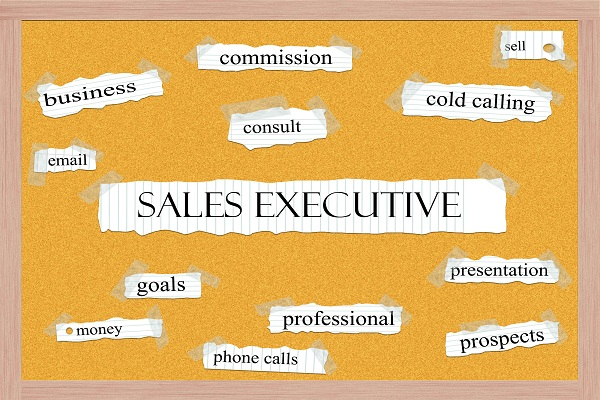 sales-executive-la-gi